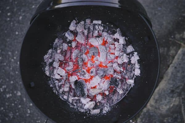 charcoal grill starting